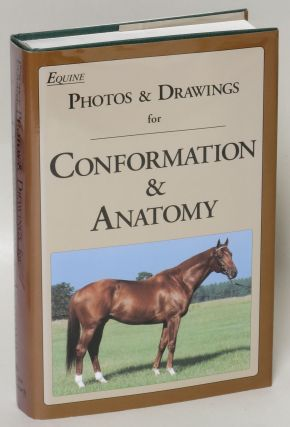 Equine Photos & Drawings for Conformation & Anatomy. Juliet Hedge
